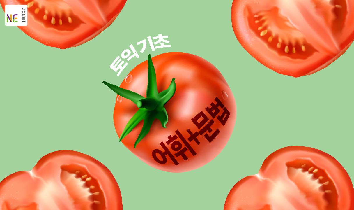 토마토 토익 기초 어휘+문법_김익겸