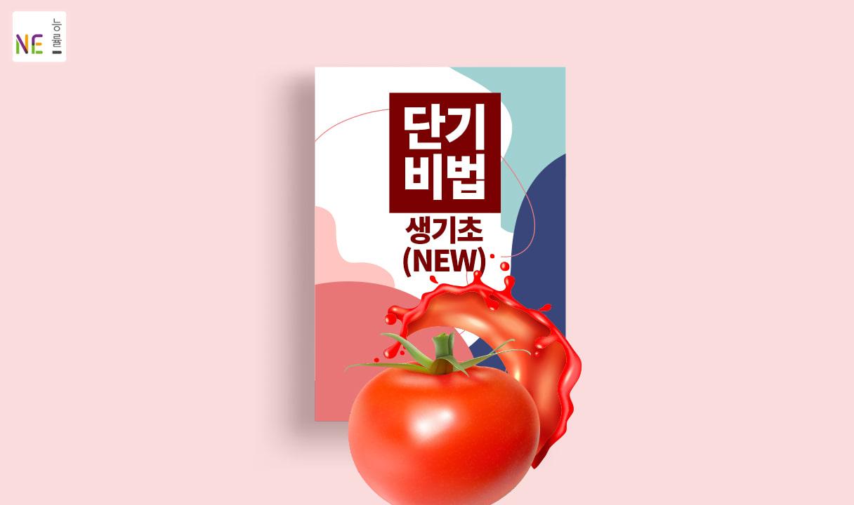 토마토 단기 비법 생기초(개정판)_리즈 나, 이규동